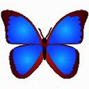 bkViewer数码照片浏览工具 v6.0f绿色中文版