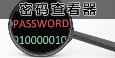 密码查看器