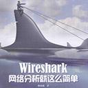 wireshark网络分析就这么简单 林沛满pdf扫描版