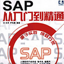 sap从入门到精通电子书 文洋pdf扫描版