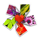 arcsoft photo+ for mac 汉化破解版(mac图片浏览器) V3.02