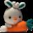 胡萝卜绿软安装管理软件 v1.0绿色版
