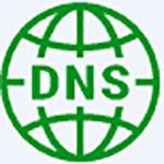 DNS Chooser(IP加速器) v0.0.0.9绿色版