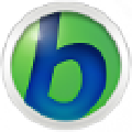 BabyIon(多语言翻译工具) v0.0.29官方版