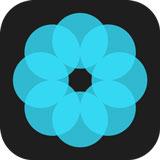 哈喽壁纸 v1.0.0安卓版