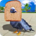 鸽子模拟器中文版 v1.0.1安卓版