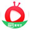 爱奇艺随刻版电脑版 v10.5.5官方版