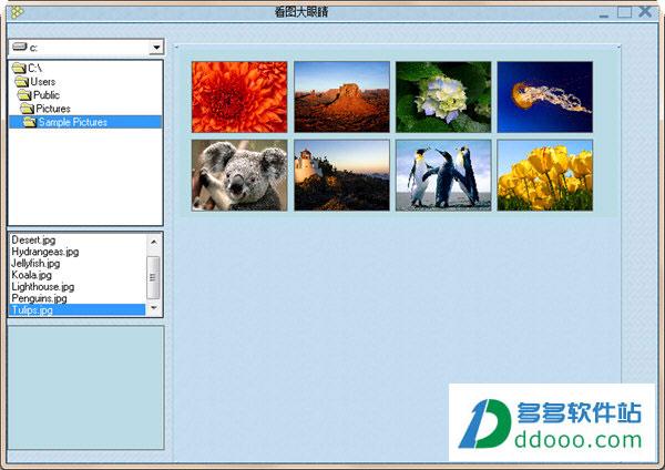 看图大眼睛(windows照片查看器) V1.0绿色免费版